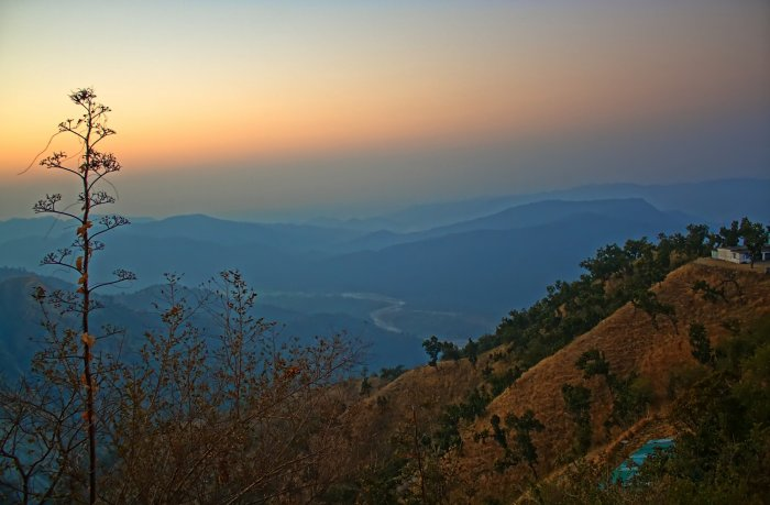 A view of River Kosi