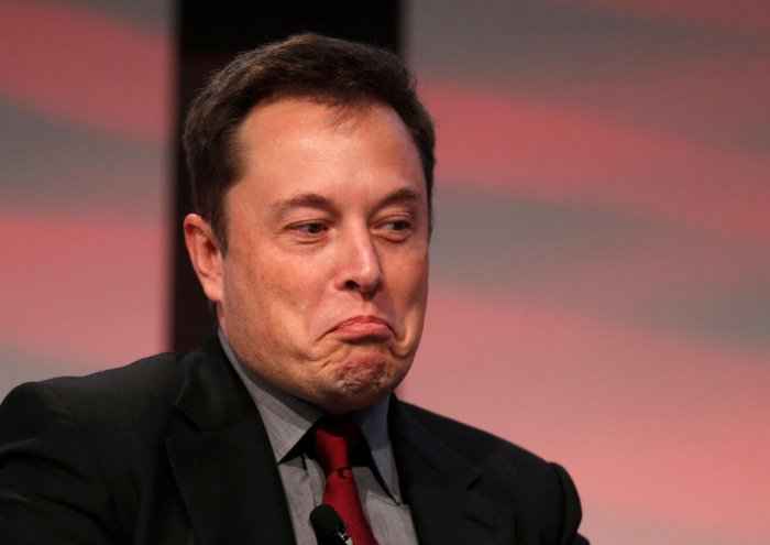 Tesla Motors CEO Elon Musk. (REUTERS/Rebecca Cook/File Photo)