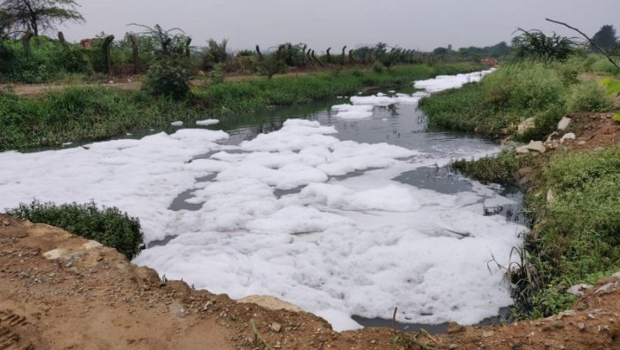 The Kalkere Lake near Ramamurthy Nagar started frothing after a week of heavy rain, going the Bellandur way.