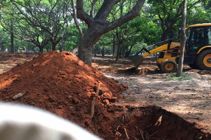 Excavators cut roots and damaged roots while clearing the ground for manicured lawns in Cubbon Park
