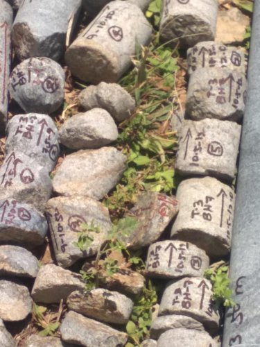 Stones collected from Salem for testing.