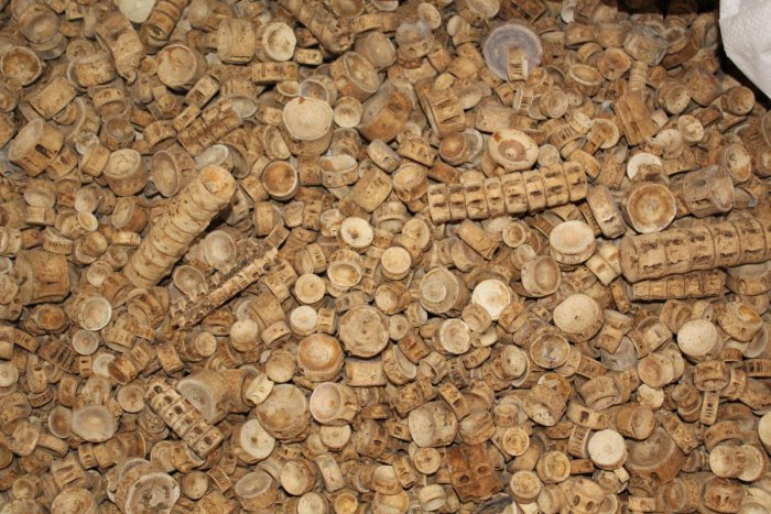 The contents of the consignment weighing 1,600 kg raised suspicion among DRI officials who consulted a research institution that confirmed the cargo contained a mixture of bones of different species, a majority of them shark bones.