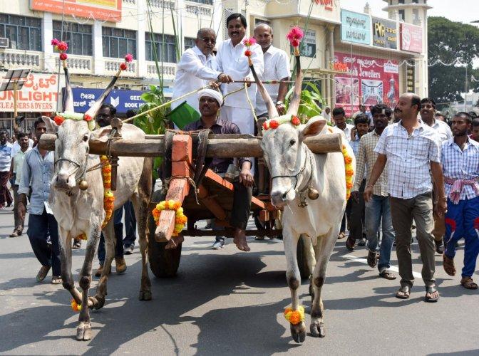 Ministers G T Devegowda, Sa Ra Mahesh, Shivashankar Reddy along with others took a bullock cart ride at the Raitha Dasara rally, as part of Dasara Celebration, at KR Circle in Mysuru on Friday.