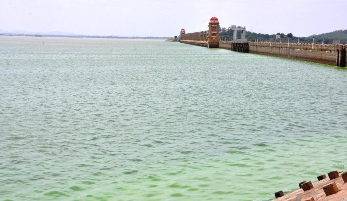 Tungabhadra reservoir, near Hosapete in Ballari district, received 5 tmcft water in last 24 hours ending 8 am on Saturday. The water level in the dam is now 1,597.19 feet while the maximum level is 1,633 feet. DH Photo