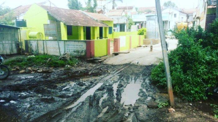 The road leading to the school at Kalmarudeshwara layout in Sakharayapattana.