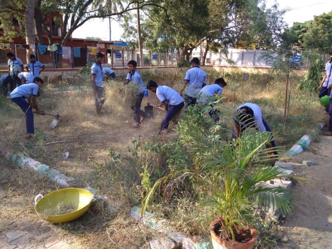 Members of an active youth group in Ballari clearing a park to plant trees.