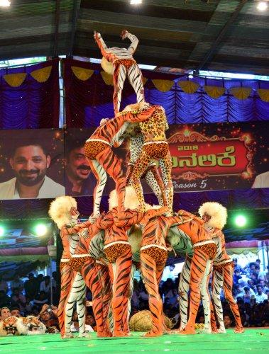 A 'Huli Vesha' team performs at the Pili Nalike 2018 in Mangaluru on Thursday.