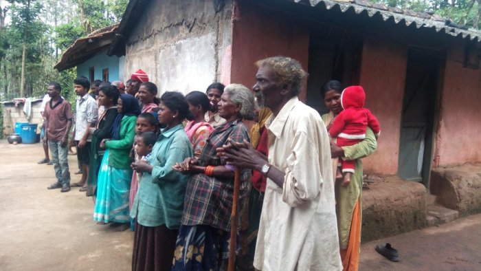 The tribal families at Kibbetta in Somwarpet.