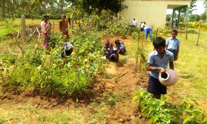 Schoolchildren watering plants at Garagadahalli Government higher primary school.