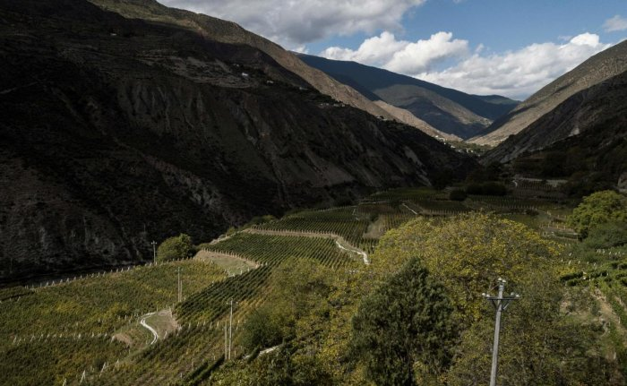 This aerial photo taken on October 10, 2018 shows a view of the Ao Yun vineyards in a valley located beneath the Meili mountain in Adong, in southwestern China's Yunnan province. (AFP Photo)