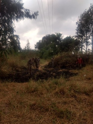 Marshals had to douse the fire at Bellandur Lake with bare hands on Friday as fire tenders could not reach the spot.