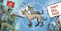 Alert strays attract the ire of Maoists