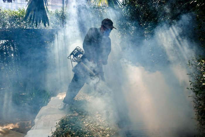 A worker sprays insecticide for mosquitos at a village in Bangkok, Thailand. (REUTERS File Photo for representation)