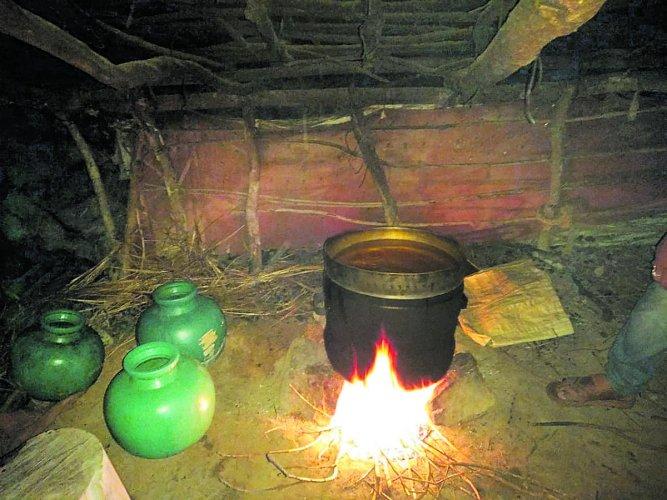 Illicit liquor being prepared in a hut built on the land belonging to Kallalli Mutt near Shanivarasanthe.