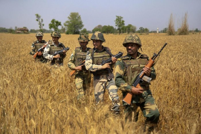 BSF personnel patrol along the international border in Jammu. (PTI File Photo)
