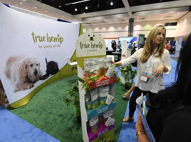 Alison Ruks promotes Hemp products to provide joint relief and medicinal use for dogs at the Cannabis World Congress in Los Angeles. (AFP File Photo)