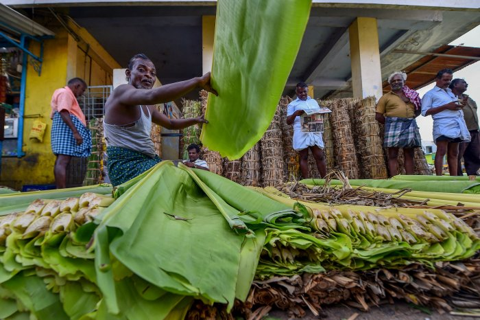 Vendors sell banana leaves at a market, in Tuticorin on Friday, June 01, 2018. The city returns to normal after days of violent protest over the closure of Vedanta's Sterlite Copper unit, in Tuticorin. PTI
