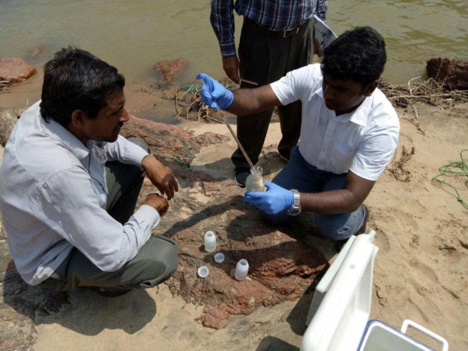 Scientists of KSPCB's constant water testing centre near Sathegala in Chamarajanagar district collect samples from River Cauvery. Photo by Special Arrangment
