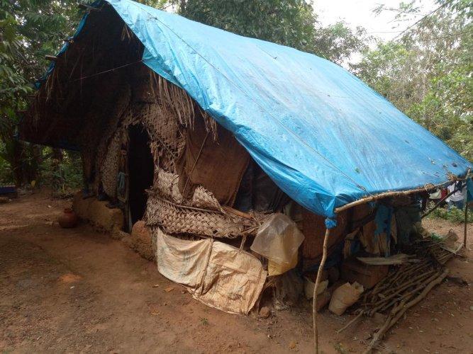 The thatched roof house of Janaki at Kaikara under Olamogru Gram Panchayat limits.
