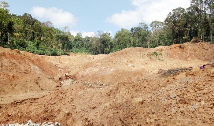 A coffee plantation affected by heavy landslides on Madikeri-Somwarpet Road.