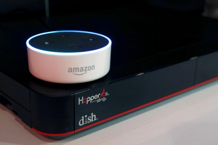 wholesale sales offer discounts release info on Error allowed Alexa user to eavesdrop on another home ...