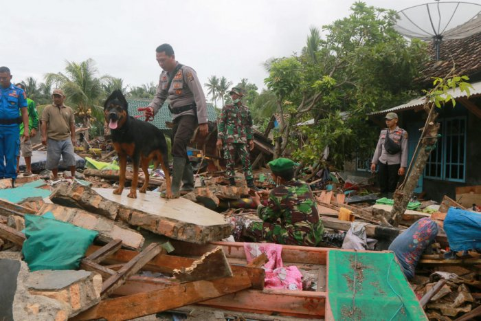 Rescue workers use a dog to search victims among debris after a tsunami hit Sunda Strait at Rajabasa in South Lampung, Indonesia. (REUTERS/Stringer)