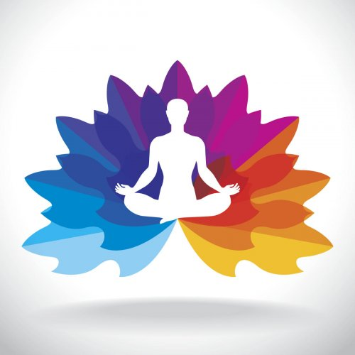 Yoga is a holistic health tool that heals and enhances the human body.
