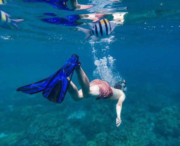 Underwater diving in Thailand