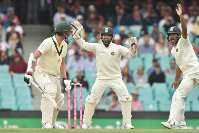 Rishabh Pant shouts as Josh Hazelwood is taken out with an LBW. AFP file photo