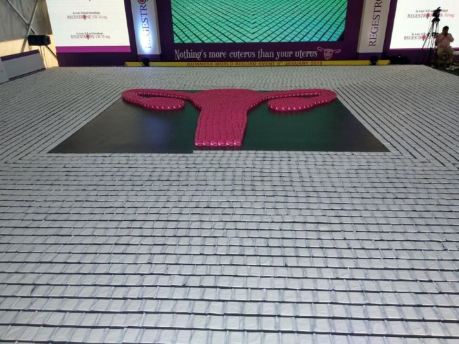 Guinness record on highest number of sanitary pads and figure of the uterus.