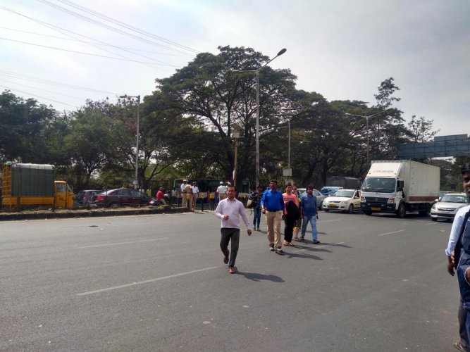 A pedestrian died as a concrete mixer hit him from behind while crossing the road at Iblur junction in East Bengaluru.