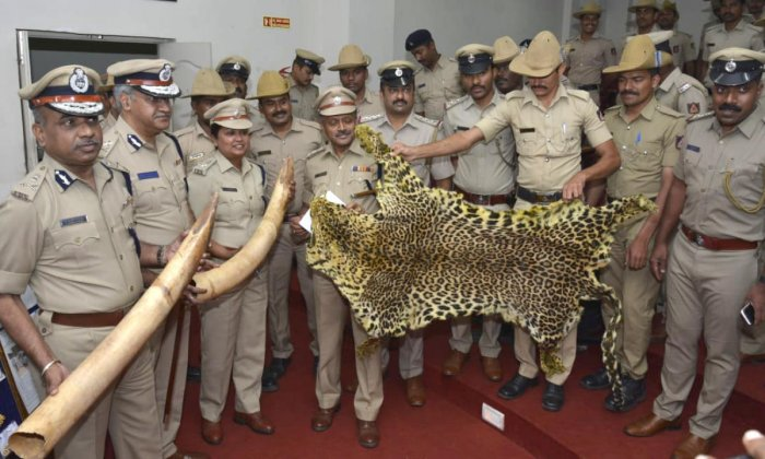 The NTCA is the statutory body under the Ministry of Environment with an overarching supervisory role as provided in the Wildlife (Protection) Act, 1972.. File photo