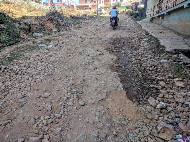 The condition of the Kalasa-Edadalu Road in Chikkamagaluru.