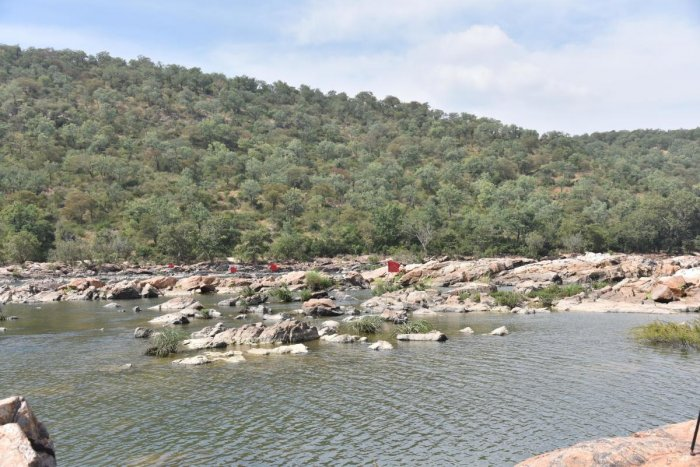 A view of the spot identified by the Karnataka government for the construction of a balancing reservoir cum drinking water project at Mekedatu. (DH Photo)