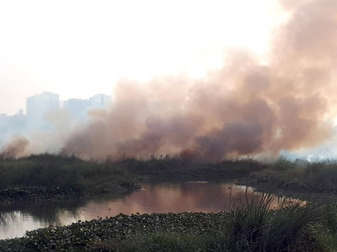Smoke billowing from the fire at Varthur lake in Bengaluru on January 20. DH Photo.