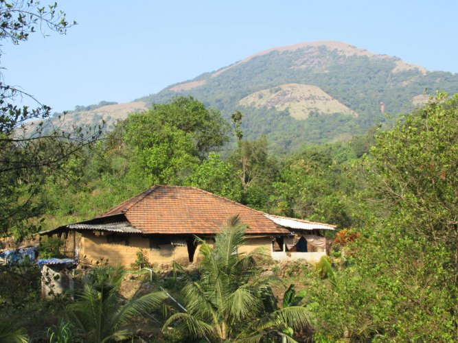 A house without electricity connection in Kudremukh National Park limits in Belthangady taluk.