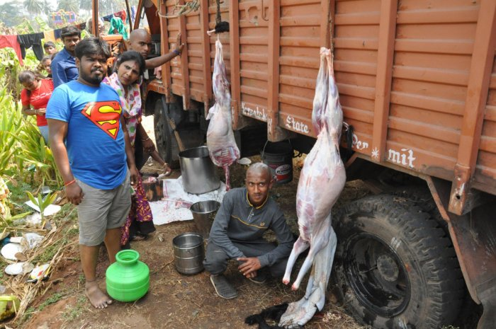 Non-vegetarian food cooked at a distance, as part of 'pankti seva', during the Chikkallur jatra, in Kollegal taluk, Chamarajanagar district, on Thursday.