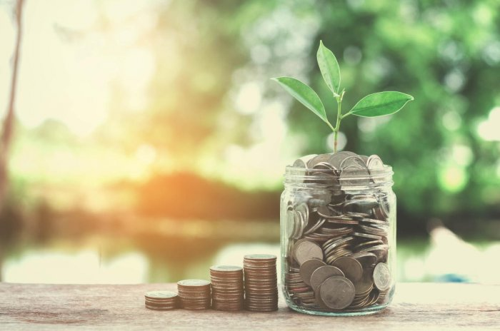 Borrowings from small savings are on increase in the past four to five years