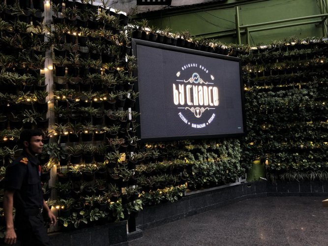 The vertical garden is a huge hit among the diners.