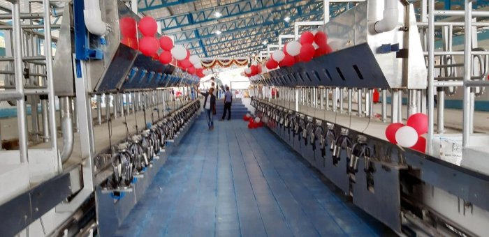Machines assembled to milk the cows at the mega dairy in Arkalgud, Hassan district.