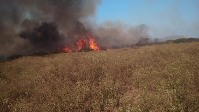 Forest fire near Devapura village. DH photo.
