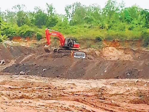 Once lush green, forest area is now denuded, thanks to BBMP