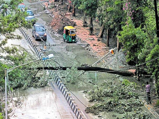 Deaths expose BBMP's poor rain preparedness