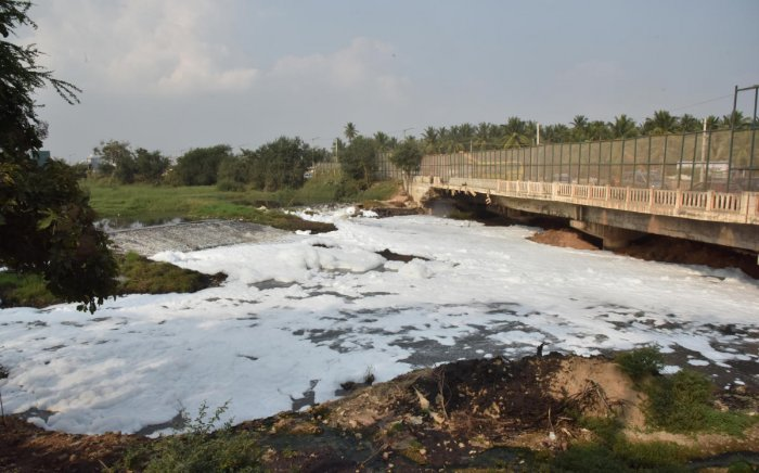 Varthur lake breaches once again, thanks to BBMP's negligence