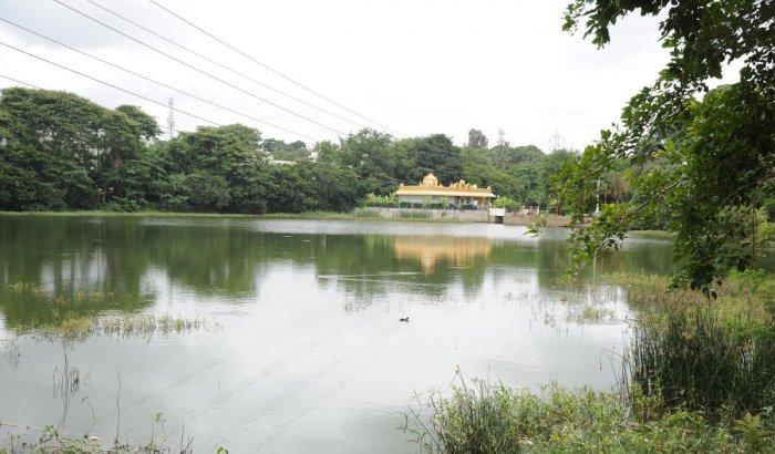 Vasanthapura lake in south Bengaluru. DH Photo/Srikanta Sharma R