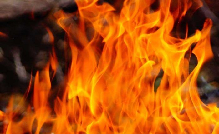 Seven people belonging to a family died in a fire while they were asleep in Purulia distinct of West Bengal on the wee hours of Friday.