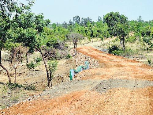 State's biggest zoo in Hampi soon