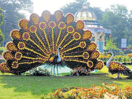 Dasara flower show: Stone chariot, capsicum peacock draw crowds