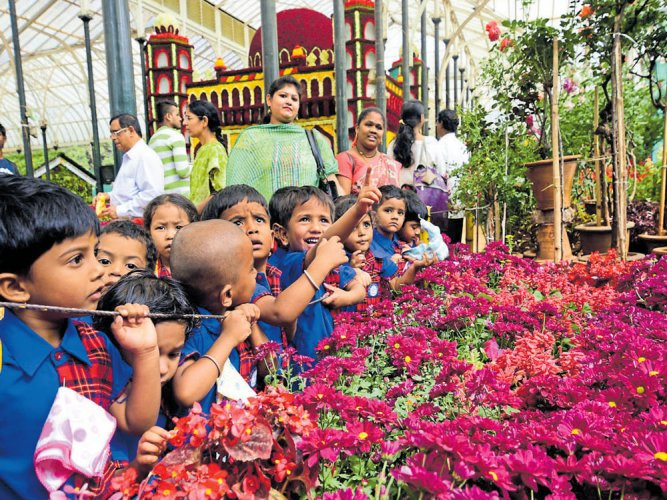 Republic Day Flower Show opens with a visual treat for visitors