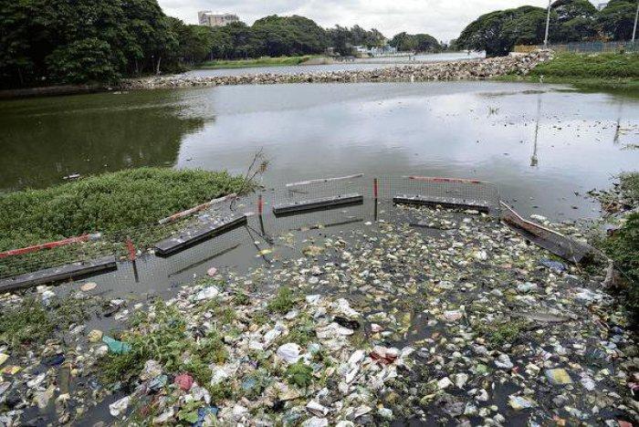 Trash barriers in Cooum River, Chennai.